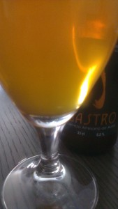 Cerveza artesanal Gastro