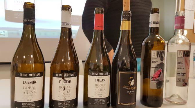 Bodegas Bruno, pasión por el vino y la tierra!