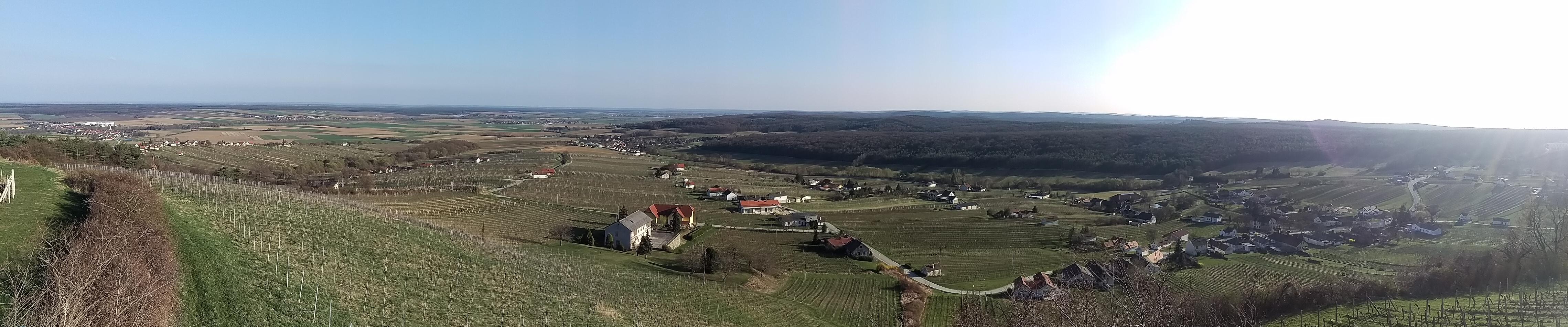 SüdBurgenland, entre vinos por Austria!